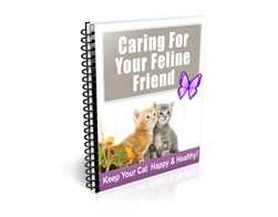 Free PLR Newsletter – Caring for Your Feline Friend