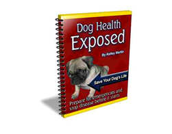 Free PLR eBook – Dog Health Exposed