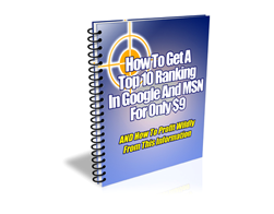 Free PLR eBook – How to Get a Top Ranking in Google and MSN for Only $9