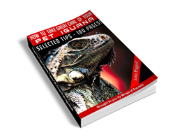 Free MRR eBook – How to Take Great Care of Your Pet Iguana