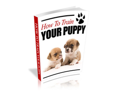 Free PLR eBook – How to Train Your Puppy