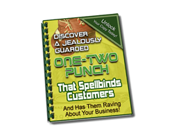 Free PLR eBook – One-Two Punch