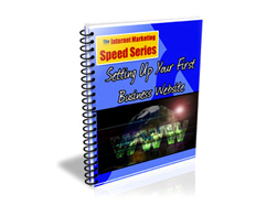 Free PLR eBook – Setting up Your First Business Website