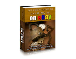 Free PLR eBook – The Expert Guide to Cashing in on eBay