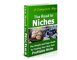 Free PLR eBook – The Road to Niches