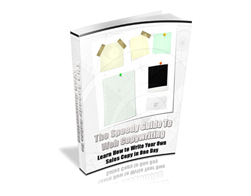 Free PLR eBook – The Speedy Guide to Web Copywriting