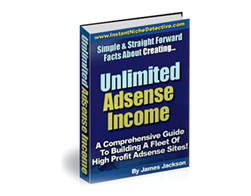 Free PLR eBook – Unlimited Adsense Income