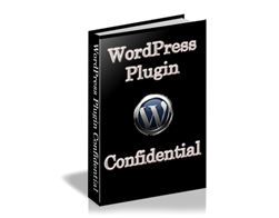 Free PLR eBook – WordPress Plugin Confidential