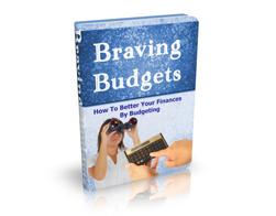 Free MRR eBook – Braving Budgets