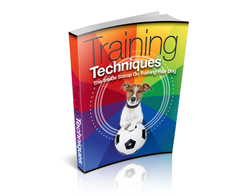 Free MRR eBook – Training Techniques
