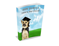 Free MRR eBook – How to Buy a Shock Dog Collar
