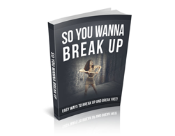 FI-So-You-Wanna-Break-Up