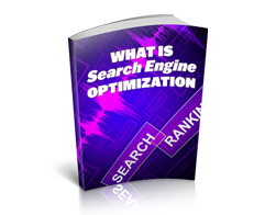 Free MRR eBook – What Is Search Engine Optimization